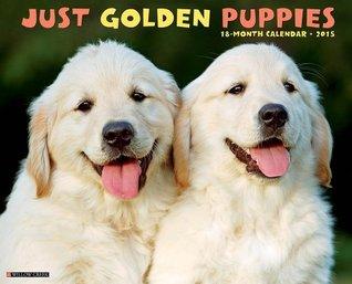 Just Golden Puppies 2015 Wall Calendar NOT A BOOK