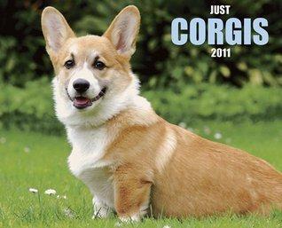 Corgis 2011 Wall Calendar (Just NOT A BOOK
