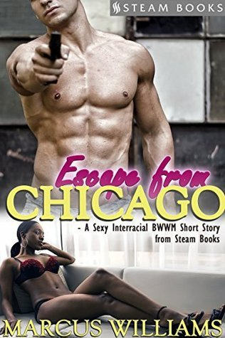 Escape From Chicago - A Sexy Interracial BWWM Short Story from Steam Books  by  Marcus Williams