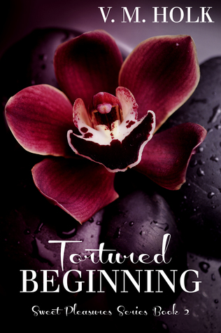 Tortured Beginning (Sweet Pleasures Series, #2)  by  V.M. Holk