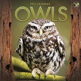 2015 Owls Wall Calendar  by  NOT A BOOK