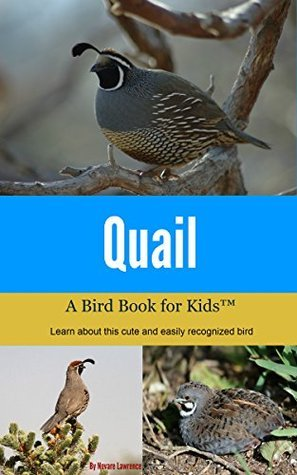 Quail: A Bird Book for Kids  by  Novare Lawrence