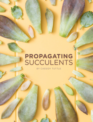 Propagating Succulents Cassidy Tuttle