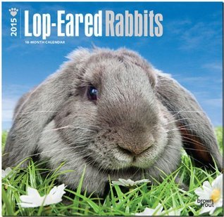 Lop-Eared Rabbits 2015 Square 12x12 NOT A BOOK