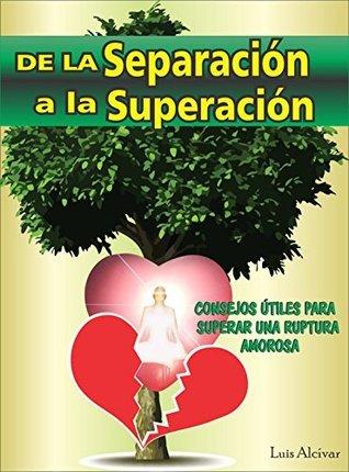 De la Separación a la Superación  by  Luis Carlos Alcivar Delgado