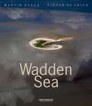 Wadden Sea Pieter De Vries