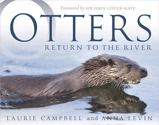 Otters: Return to the River  by  Anna Levin