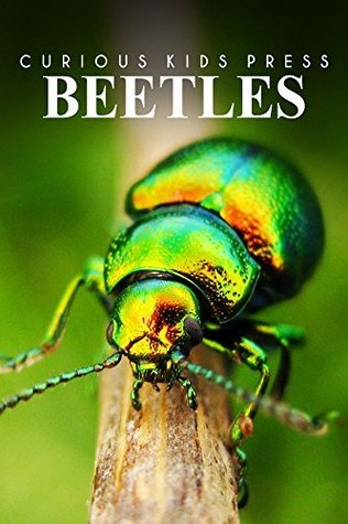 Beetles - Curious Kids Press: Kids book about animals and wildlife, Childrens books 4-6 Curious Kids Press