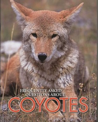 Coyotes  by  Michael Rigsby