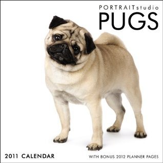 Portrait Studio - Pugs 2011 Square 12X12 Wall Cal  by  NOT A BOOK