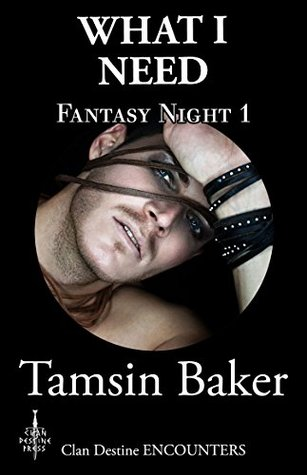 What I Need - Fantasy Night 1 (Clan Destine Encounters Book 19) Tamsin Baker