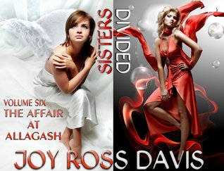The Affair at Allagash (Sisters Divided, #6)  by  Joy Ross Davis