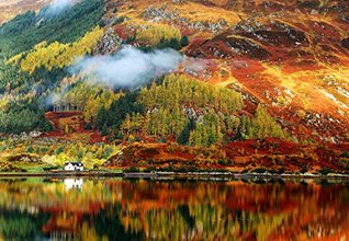 Autumn Color Explosion - Photo Gallery  by  Fred Kox