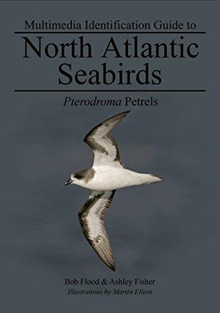 Pterodroma Petrels: North Atlantic Seabirds (Multimedia ID guides to North Atlantic Seabirds)  by  Bob Flood