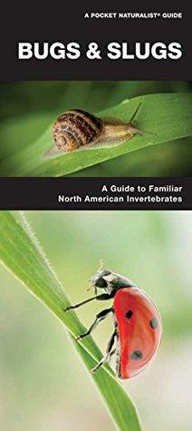 Bugs & Slugs: A Folding Pocket Guide to Familiar North American Invertebrates (Pocket Naturalist Guide Series) Raymond Leung James Kavanagh