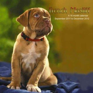French Mastiff 2012 Wall Calendar #DOG54 Magnum Publications