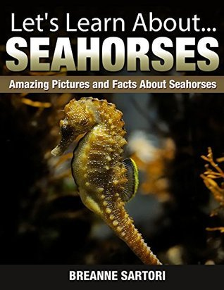 Seahorses : Amazing Pictures and Facts About Seahorses Breanne Sartori