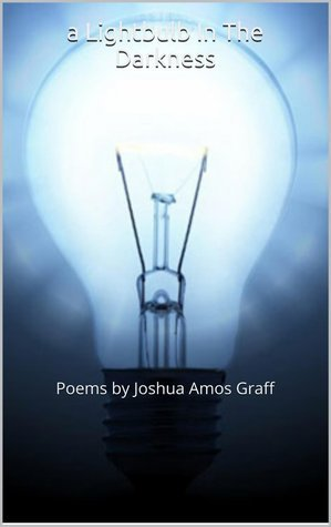 A Lightbulb In The Darkness  by  Joshua Amos Graff