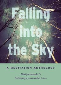 Falling Into the Sky: A Meditation Anthology Abhi Janamanchi