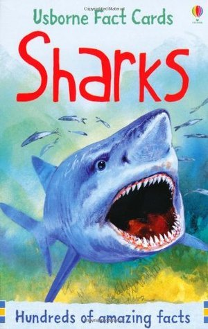 Sharks Philip Clarke