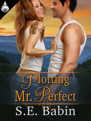 Plotting Mr. Perfect S.E. Babin