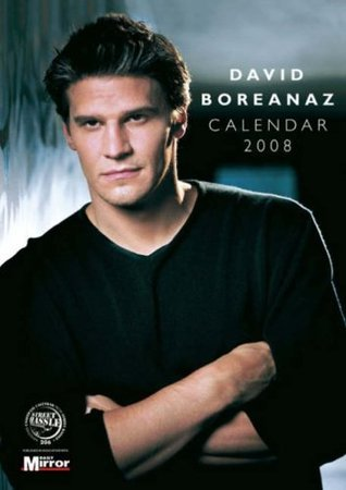 David Boreanaz Unofficial Calendar 2008 (A3 Calendar) (A3 Calendar) Street Hassle Publishing Ltd