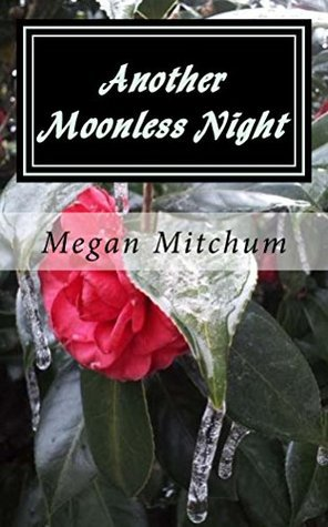 Another Moonless Night (Darkness Before Dawn Book 3) Megan Mitchum