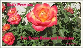 Two Dozen Roses and Promises: Gods Promises Holy Bible King James Version