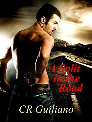 A Split in the Road (Vampire Wars, #3)  by  C.R. Guiliano