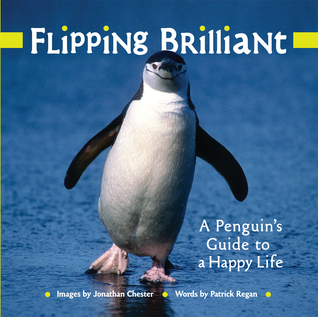 Flipping Brilliant: A Penguins Guide to a Happy Life  by  Jonathan Chester