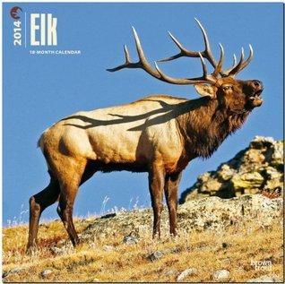 Elk Calendar  by  NOT A BOOK