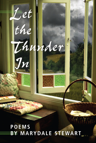 Let the Thunder In  by  Marydale Stewart