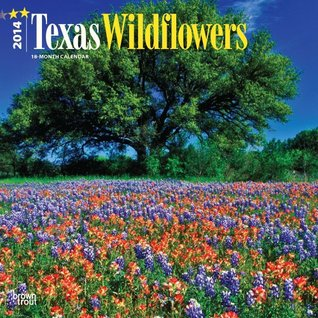 Texas Wildflowers NOT A BOOK