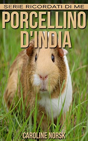 Porcellino dIndia: Libro sui Porcellino dIndia per Bambini con Foto Stupende & Storie Divertenti  by  Caroline Norsk