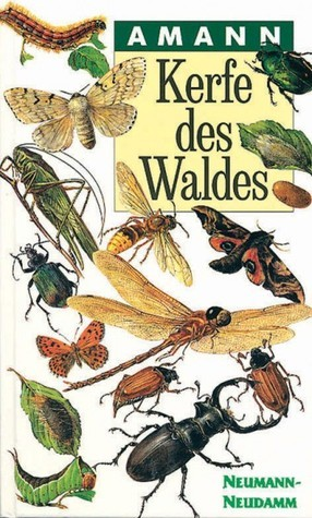 Kerfe des Waldes  by  Gottfried Amann