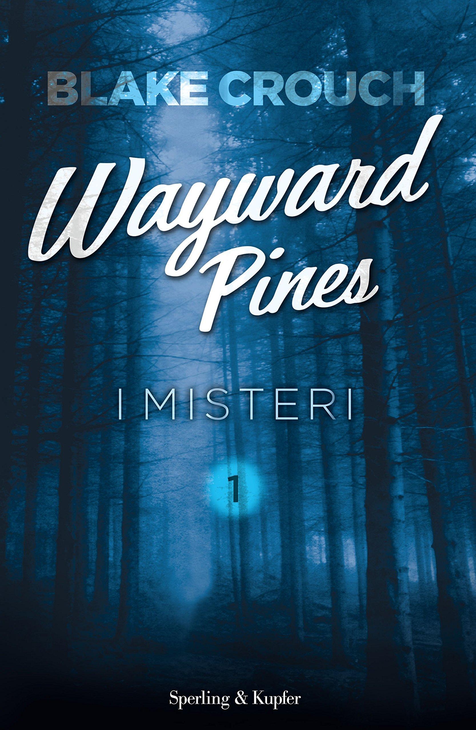 I misteri (Wayward Pines, #1)  by  Blake Crouch