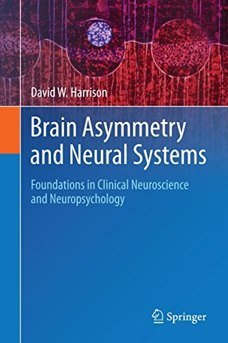 Brain Asymmetry and Neural Systems: Foundations in Clinical Neuroscience and Neuropsychology David W. Harrison