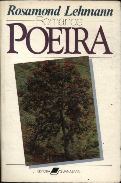 Poeira  by  Rosamond Lehmann