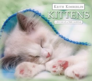 Keith Kimberlin Kitten 2013 Day-At-A-Time Box Calendar  by  NOT A BOOK