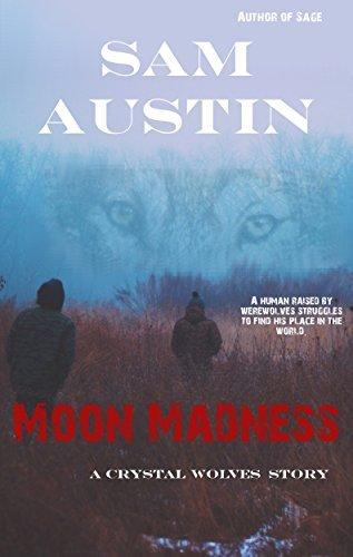 Moon Madness: Crystal Wolves Sam Austin