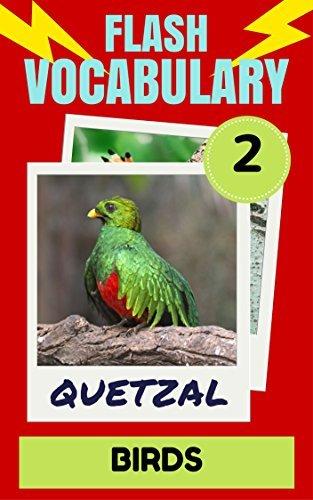 Flash Vocabulary #2: 101 Birds  by  Derek McKenzie