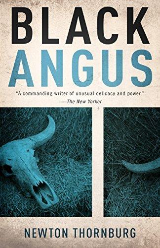 Black Angus  by  Newton Thornburg