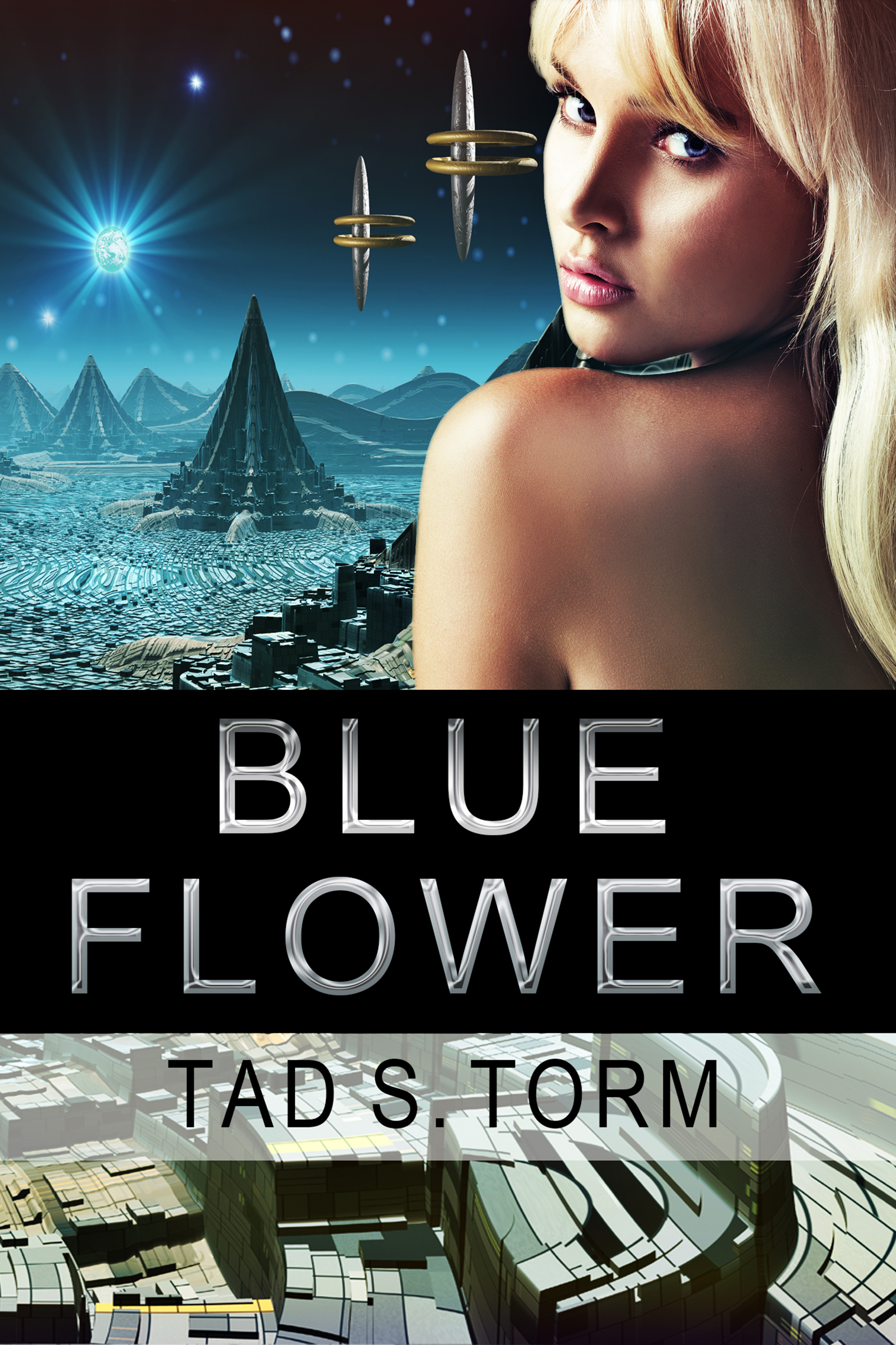 Blue Flower  by  Tad S. Torm