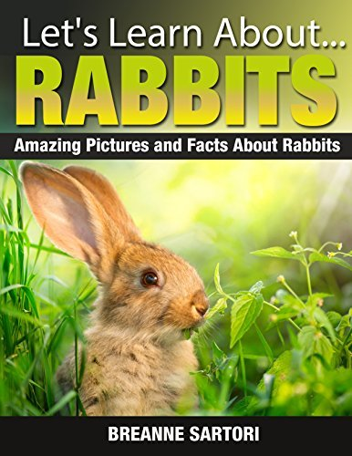 Rabbits: Amazing Picture and Facts About Rabbits Breanne Sartori