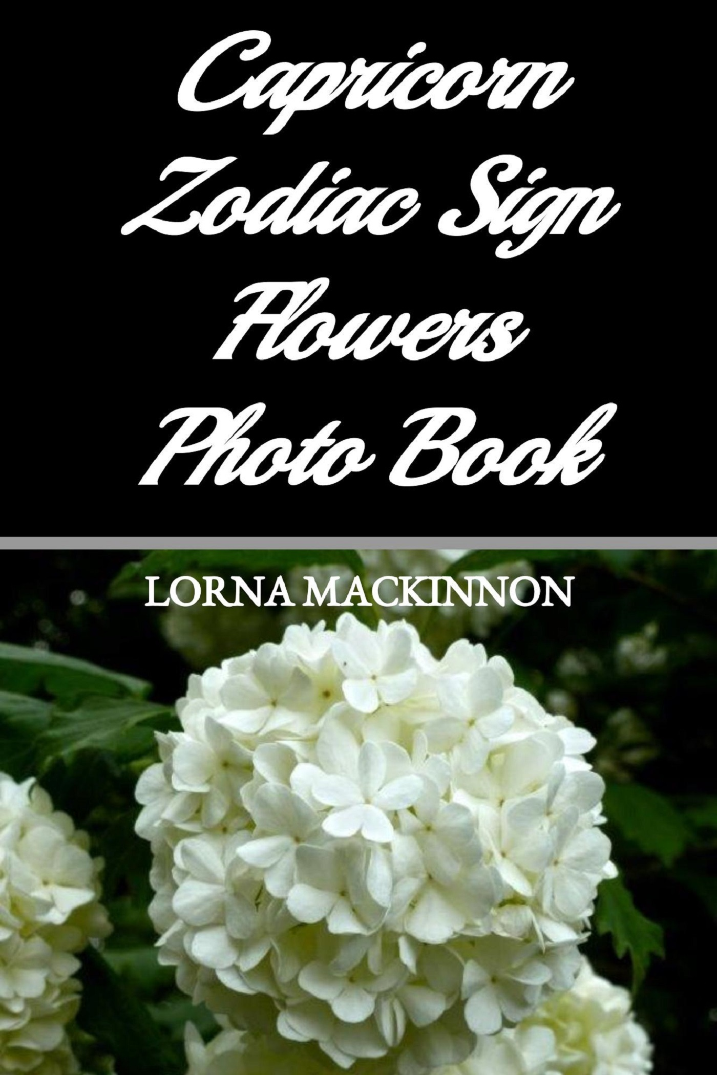Capricorn Zodiac Sign Flowers Photo Book  by  Lorna Mackinnon