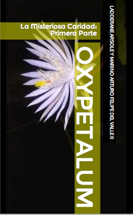 Oxypetalum:  La Misteriosa Caridad:  Primera Parte  by  Ladderane Arsole
