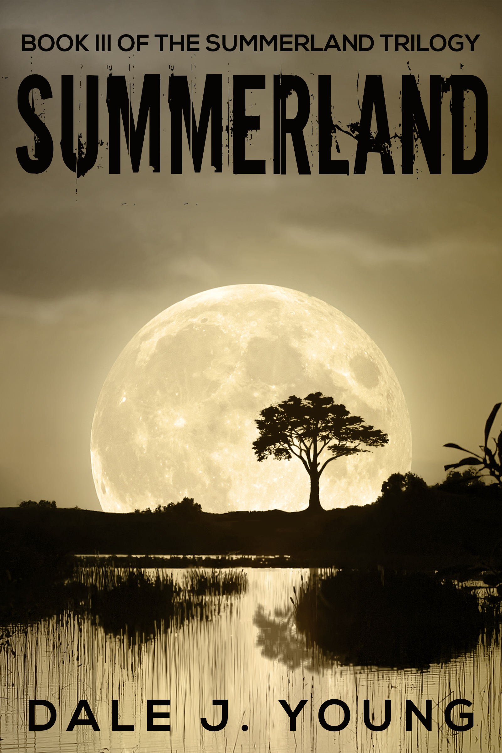 Summerland (The Summerland Trilogy, Book 3)  by  Dale J. Young