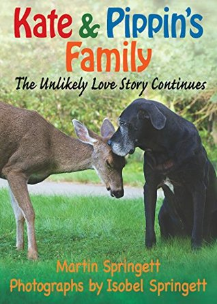 Kate & Pippins Family: The Unlikely Love Story Continues  by  Martin Springett