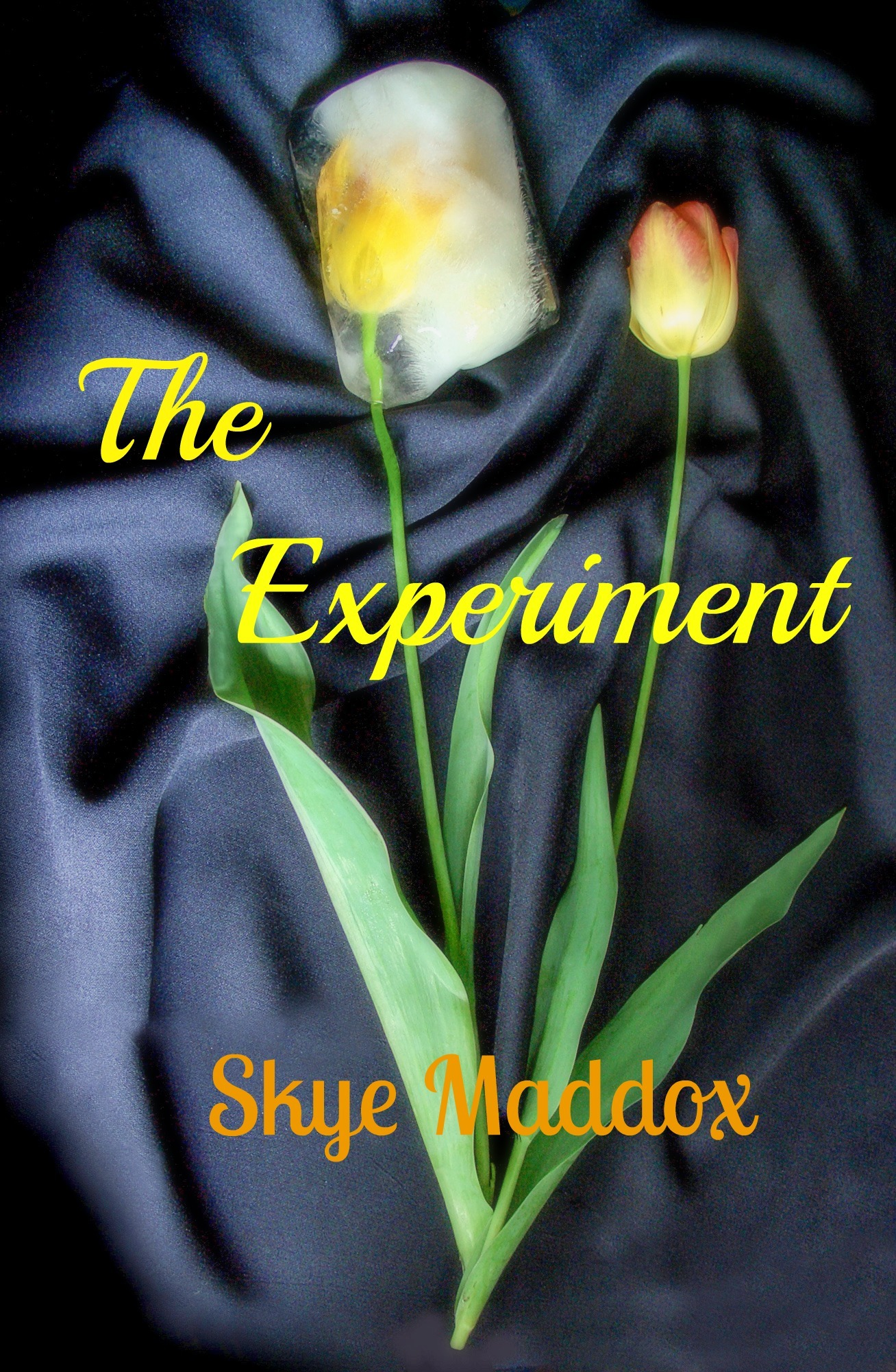 The Experiment (Pyramid Dommes, #1) Skye Maddox