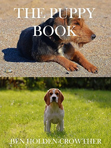 The Puppy Book (HC Picture Books 57) Ben Holden-Crowther